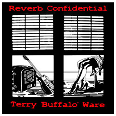 Reverb Confidential cover